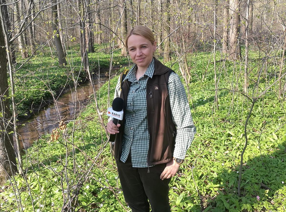 Światowy Dzień Ziemi świętujemy w lesie [AUDIO]