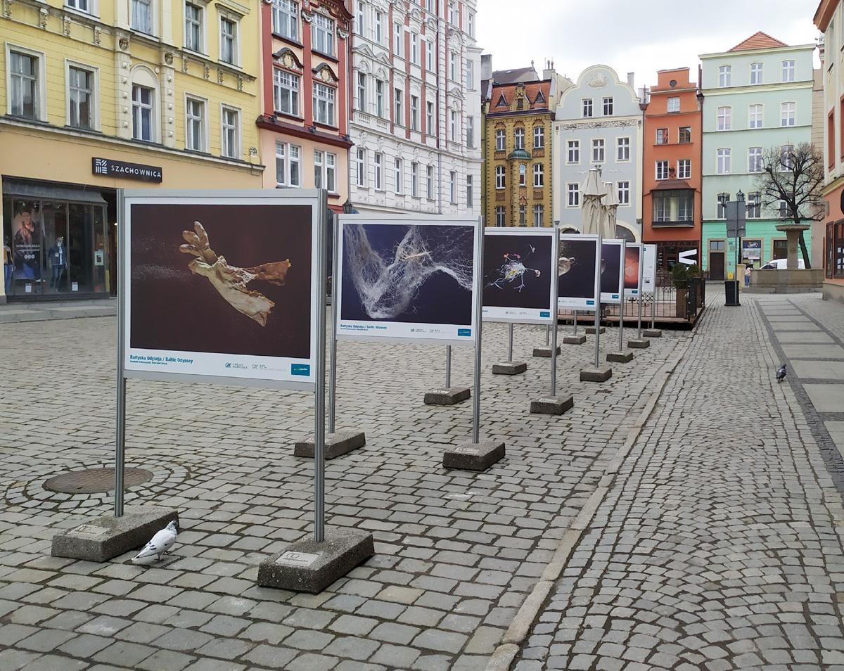"""Śmieciowe """"skarby Bałtyku"""" w Świdnicy [FOTO]"""